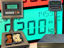 Bench and Portion Scales