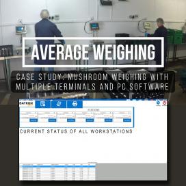 Average Weight Software